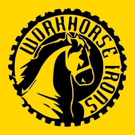 WORKHORSE IRONS